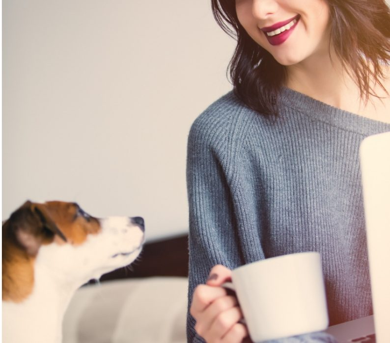 coffee bad for dogs and cats